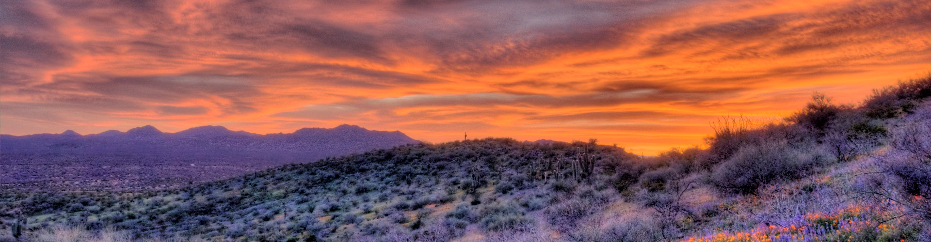 yarnell single parents See the yarnell and get all the information you need view our other homes for sale in arizona at re/max re/max main menu  single family single family.